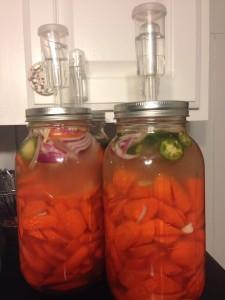 Carrots Fermented08938697140964182_n
